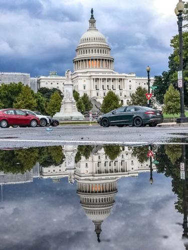 Das Capitol in der Regenpfütze