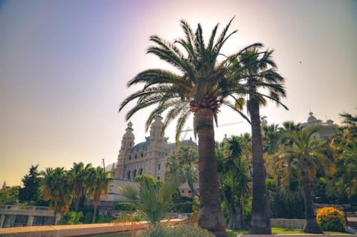 Im Hindergrund das Casino von Monaco