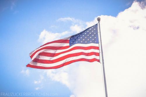 Lady_Liberty_Freiheitsstatue_NewYork_FrauZuckerbroetchen2